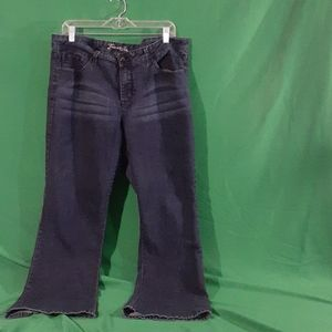 Source of wisdom torrid sz 20 jeans